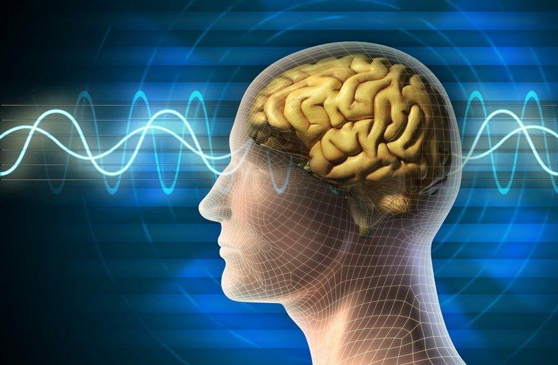 Achtsamkeit Forschung Neurowissenschaft