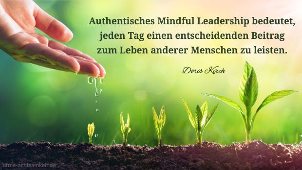 Wasser aus einer Hand tropft auf unterschiedlich große Pflänzchen als Zeichen, wie man durch Mindful Leadership zum Wachstum anderer Menschen beitragen kann.