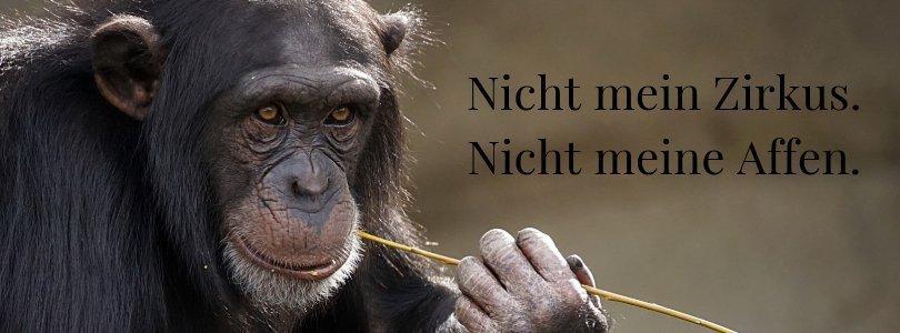 Achtsam mit Affen auf den Schultern umgehen.